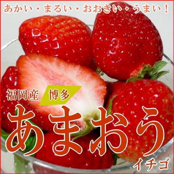 福岡特産イチゴ「博多あまおう」イチゴ デラックス (大粒 18個前後入り)2パック入り箱02