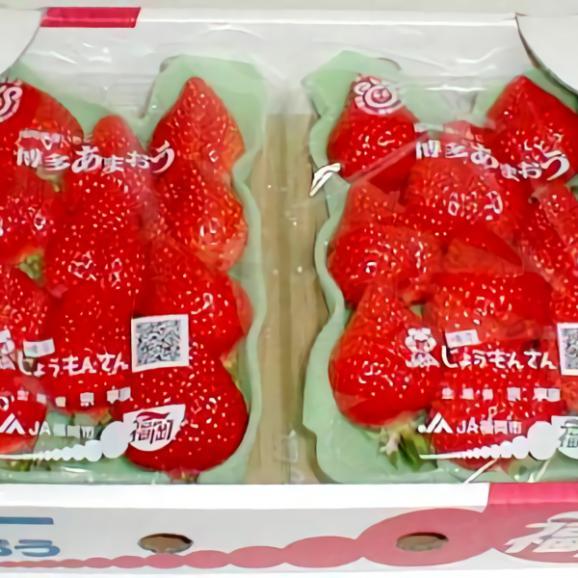 福岡特産イチゴ「博多あまおう」イチゴ デラックス (大粒 18個前後入り)2パック入り箱04