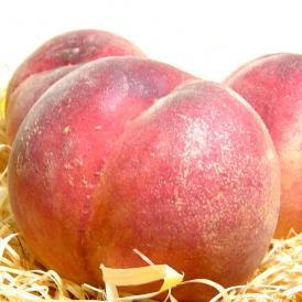 ぶりな桃の果肉にピュアな果汁がたっぷり。モモらしいみずみずしい美味しさが楽しめます