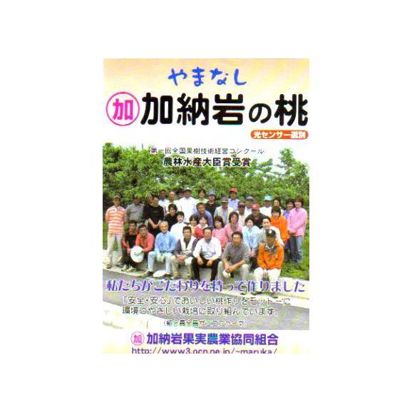 桃 加納岩(かのいわ)果樹園の桃(もも/モモ) 約5kg 大玉15~16個入り 山梨産05