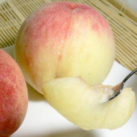 大ぶりな桃の果肉にピュアな果汁がたっぷり。モモらしいみずみずしい美味しさが楽しめます