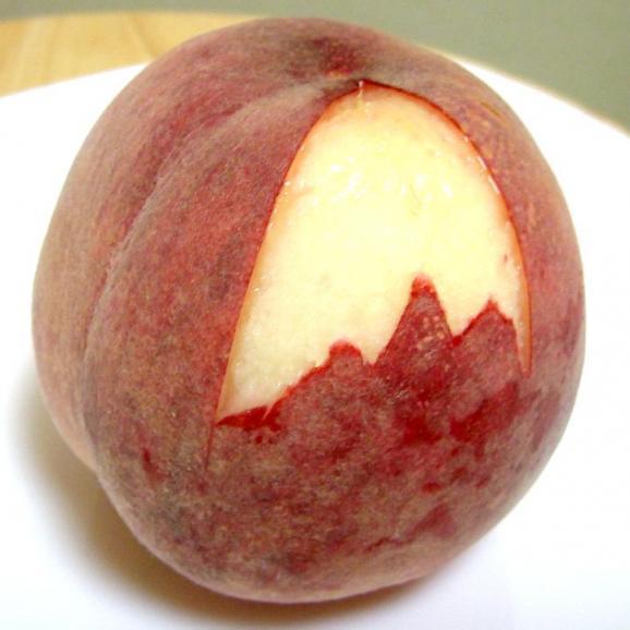 【お試し 送料無料】山梨産 加納岩果樹園の桃(かのいわかじゅえんのもも)「訳あり」約2.5kg 9~11個入り モモ *商品のお届けは6月末からとなります。04