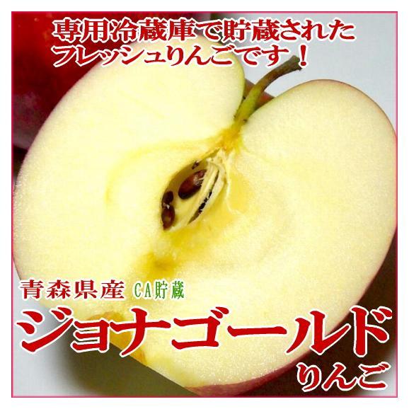 青森産 ジョナゴールドりんご 約10kg 大玉 24~26個入り CA貯蔵01