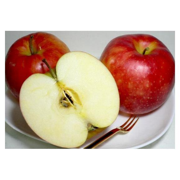 青森産 ジョナゴールドりんご 約10kg 大玉 24~26個入り CA貯蔵02