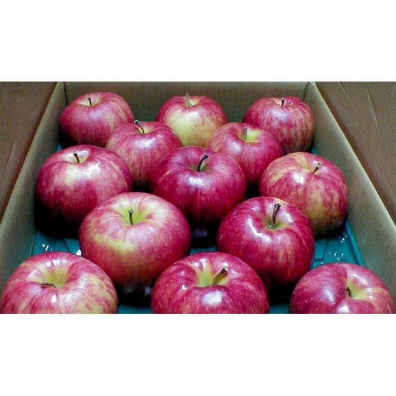 青森産 ジョナゴールドりんご 約10kg 大玉 24~26個入り CA貯蔵05