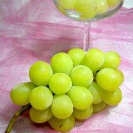 緑色のぶどう 高級品 皮ごと食べられる甘いブドウです