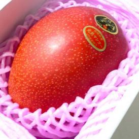 宮崎産 完熟マンゴー 太陽のタマゴ 特大 5Lサイズ 1個入り 化粧箱