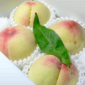 美味しさで定評あるまるひゃく特選のあらかわの桃です