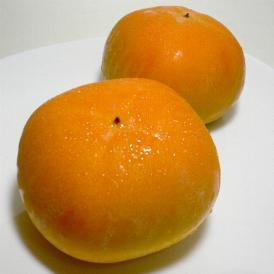 奈良産 ハウス柿(かき)10個入り化粧箱