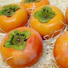 奈良産  富有柿(ふゆうがき) 2Lサイズ 約3.75kg 12個前後入り