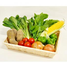 【富山県産】旬菜BOX(旬の野菜セット)