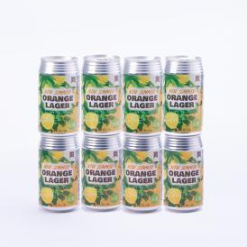 御殿場高原ビール季節限定ビールニューサマーオレンジ8缶セット