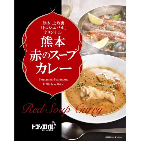 熊本 赤のスープカレー まとめ買い28箱セット【送料無料】02