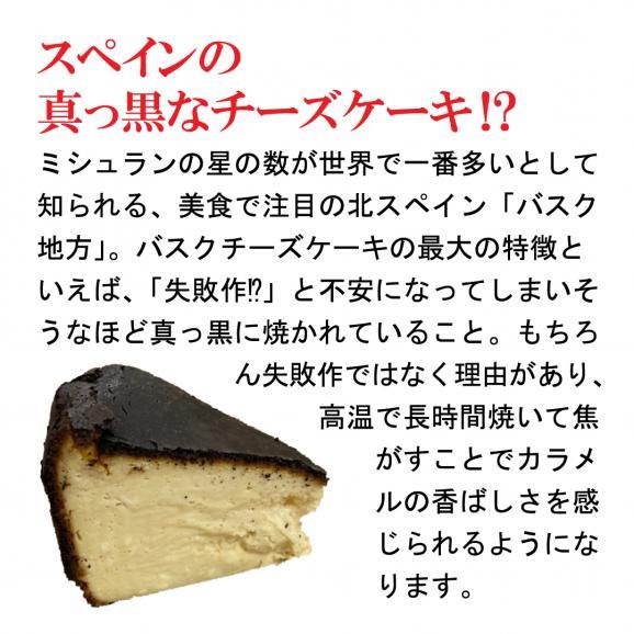 [通常配送]バスクで食べた真っ黒なチーズケーキ<バスクチーズケーキ>プレーン・ミニホール12㎝【箱入り・冷凍便】03