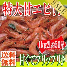 プリプリの特大冷凍甘えび1kg/2L約50尾/えび/エビ/甘エビ/甘海老/冷凍A