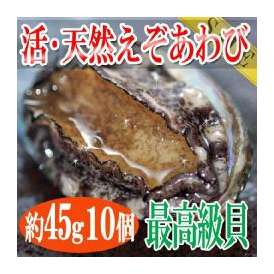 函館産活天然えぞあわび45gサイズ10個/函館冷凍