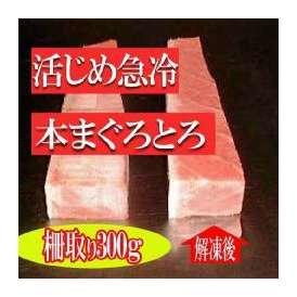 活じめ急冷本まぐろトロ300g/とろ/まぐろ/マグロ/お刺身/札幌冷凍