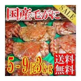 毛蟹を5-9杯約3キロ/北海道で水揚げ/毛がに/冷凍A