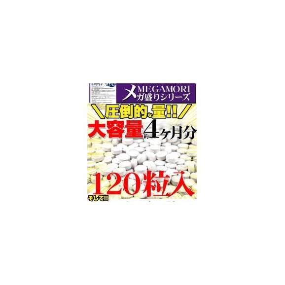 メガ盛り★ブルーベリー&ルテインサプリ約4ヵ月分/サプリ/メール便02