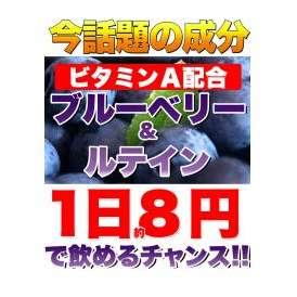 メガ盛り★ブルーベリー&ルテインサプリ約4ヵ月分/サプリ/ネコポス