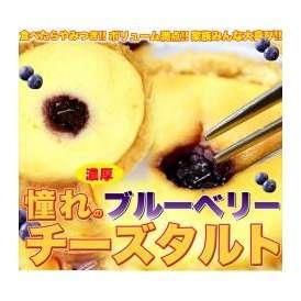 【訳あり】ブルーベリーチーズタルトどっさり1kg/常温便