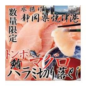 静岡県焼津港で水揚げされた本場のマグロ!!500g【訳あり】冷凍ビンチョウハラ身切落とし/まぐろ/冷凍A