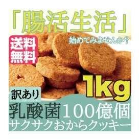 【訳あり】サクサク乳酸菌おからクッキー1kg/腸内フローラを整え、毎日腸活生活!!乳酸菌100億個/おから/送料無料 /常温便