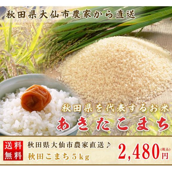 秋田県大仙市農家直送♪秋田こまち5kg(玄米か白米をお選びください。白米でのお届けの場合は約4.5kgで配送となります)01