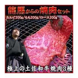 【送料無料】龍馬からの焼肉セット600g【冷凍】
