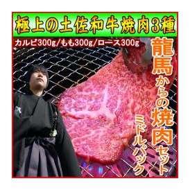 【送料無料】龍馬からの焼肉セット ミドルパック900g【冷凍】