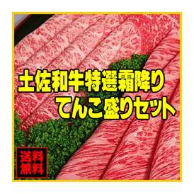 送料無料 土佐和牛特選霜降りセット1kg【冷凍】