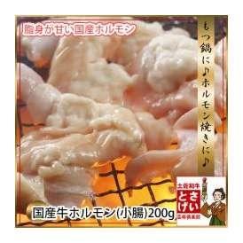 国産牛ホルモン【小腸】200g冷凍
