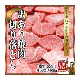 訳あり焼肉200g【冷凍】