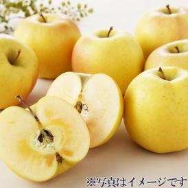 【青森県】黄色いりんご「こうこう」 4.5㎏