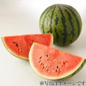 【熊本県】肥後浪漫スイカ 大玉1玉