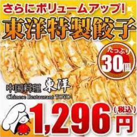 東洋特製餃子 30個(750g)セット