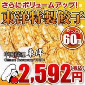 東洋特製餃子 60個(1500g)セット