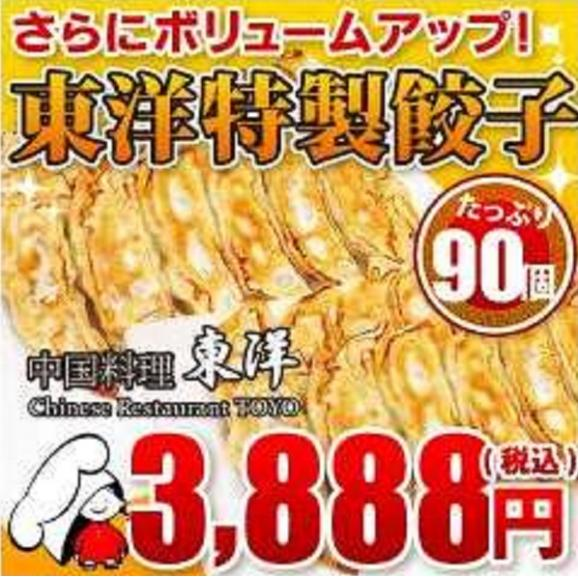 東洋特製餃子 90個(2250g)セット01