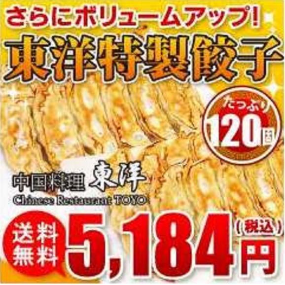 【送料無料】東洋特製餃子 120個(3000g)セット01