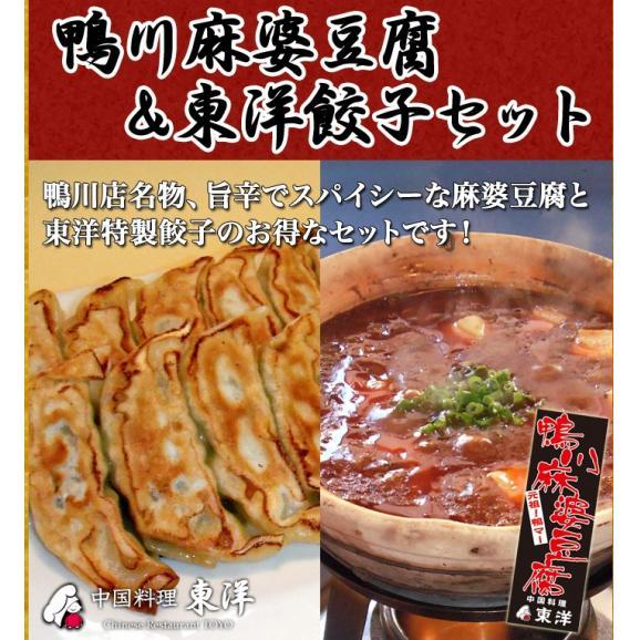 【送料無料】鴨川麻婆豆腐(5個)&東洋餃子(30個)セット01