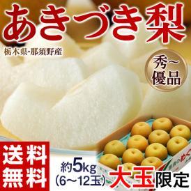 栃木県那須野産「あきづき梨」 約5kg(大玉 6~12玉) 優~秀品 ※常温 送料無料