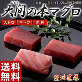 大間 まぐろ クロマグロ 鮪 日本一のブランド「大間の本まぐろ」大トロ・中トロ・赤身(各約100g)※冷凍 送料無料