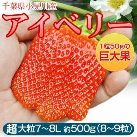 いちご イチゴ 苺 千葉県産 アイベリー 8~9粒 約500g ※冷蔵 送料無料