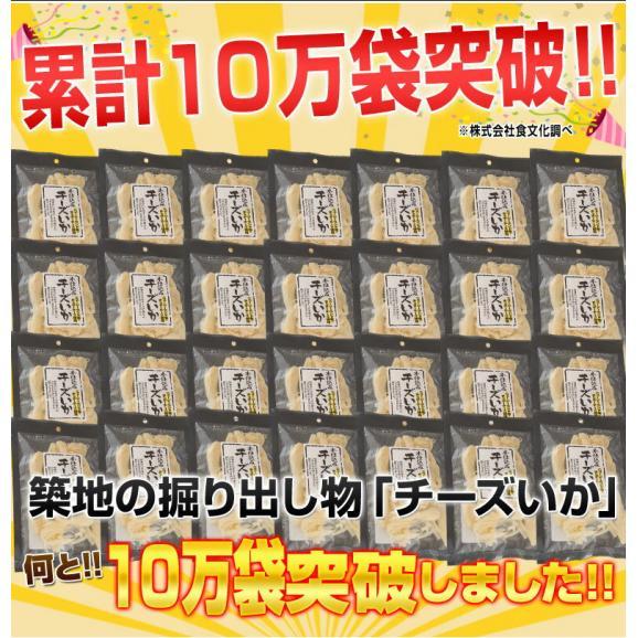 さきいか イカ チーズ おつまみ 北海道加工 『チーズいか』 10袋 (1袋あたり72g) 常温 送料無料02