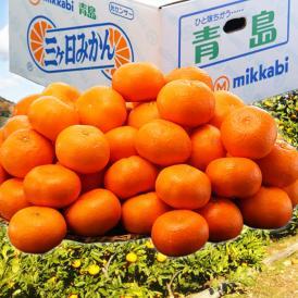 みかん 送料無料 静岡産 三ヶ日みかん 青島種 3~4Lサイズ 約8kg