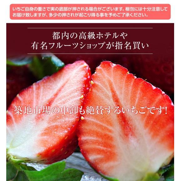 いちご イチゴ 苺 茨城県産 『村田さん家のいちご』 約250g×4パック ※冷蔵 送料無料02
