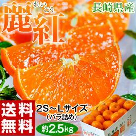 柑橘 長崎県産 JA長崎せいひ 麗紅 バラ詰 約2.5kg 2S~L (目安として15~26玉) 送料無料