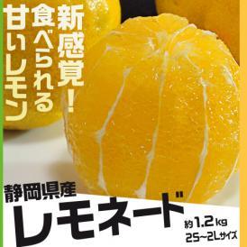 甘いレモン 柑橘 静岡県産 レモネード 約1.2kg 2S~2Lサイズ 常温 送料無料