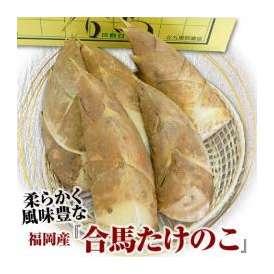 『合馬の筍 (たけのこ)』 福岡・合馬産 約2kg(28本) ※冷蔵 ○
