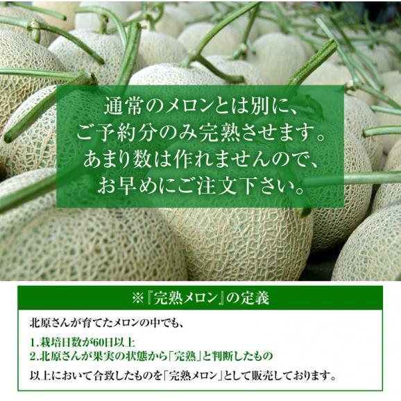 メロン めろん 北海道産 北原さんの完熟メロン 化粧箱入 1玉 約1.4kg 送料無料06